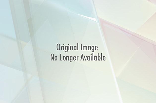 [Image: IMG_02721.jpg?w=630&h=354&am...p;amp;q=89]