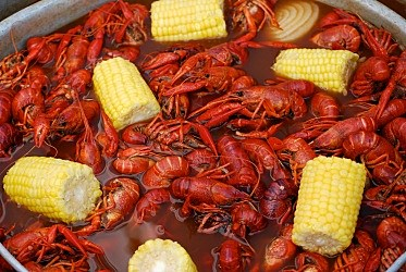 Crawfish, iStock photo