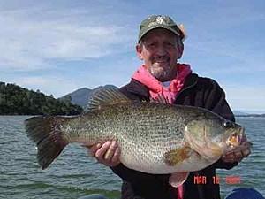 13lb Bass Toledo Bend